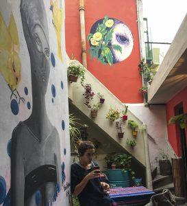 Mi otro emprendimiento - La Pajarera, Escuela de fotografía